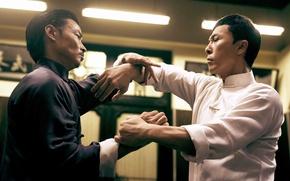 Picture cinema, fighter, man, fight, movie, film, martial artist, kung fu, Donnie Yen, wushu, Ip Man …