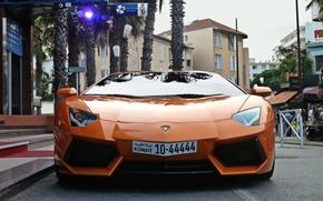 Picture car, Lamborghini Aventador, sport cars city, soprt