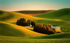 Picture field, nature, house, view, farm