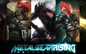 Picture art, Sam, Raiden, Metal Gear Rising: Revengeance, Jack the Ripper, Cyborg Ninja, Sundowner, Bloodlust, Platinum …