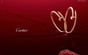 Picture style, gold, decoration, earrings, brand, diamond, Cartier