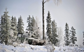 Picture winter, weapons, army