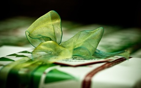 Picture macro, gift, tape, bow