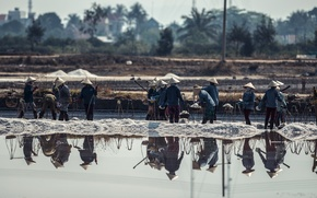 Picture water, asia, people, Vietnam, workers, SALT FIELD WORKERS VIETNAM
