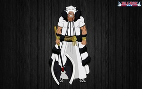 Picture axe, game, Bleach, anime, crown, fog, assassin, asian, manga, old man, king, japanese, belt, oriental, …