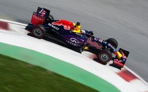 Picture Formula 1, Red Bull Racing, RB11, Daniel Ricciardo