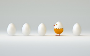 Picture abstraction, the world, art, chicken, looks, waiting for, five, eggs, first, hatched, wallpaper., from the …