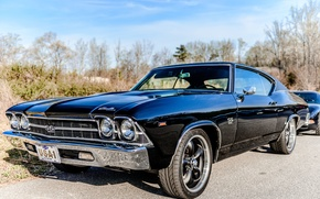 Picture car, USA, grass, black, sky, blue, Chevrolet Chevelle SS 396