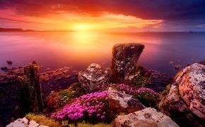 Picture the sun, stones, shore, Horizon
