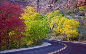 Picture road, autumn, leaves, trees, mountains, rocks, Utah, USA, zion national park