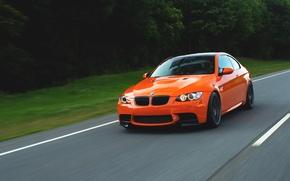 Picture road, trees, orange, speed, BMW, BMW, road, speed, orange, e92