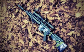 Picture autumn, leaves, sniper, rifle, rifle, airsoft, airsoft, m16spr