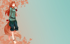 Picture Holo, spice and wolf, Spice and wolf, The Wallpapers
