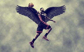 Picture wings, basketball, sky, miami heat, lebron James