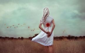 Picture field, flower, girl