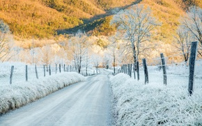 Picture road, the fence, mountains, sunlight, cold, Tennessee, frost, hoar frost, Cades Cove