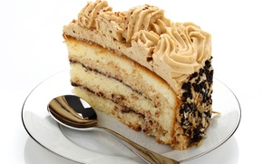 Picture cake, cream, piece