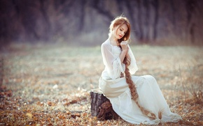 Wallpaper autumn, forest, grass, look, leaves, girl, trees, nature, Wallpaper, sweetheart, model, hair, stump, figure, blonde, ...