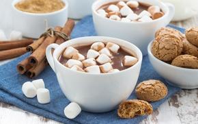 Picture cookies, cinnamon, cocoa, marshmallows