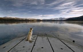 Wallpaper plate, lake, mountains