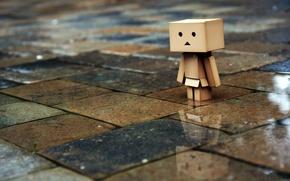 Picture sadness, rain, tile, man, danbo, boxed, box