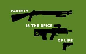 Wallpaper shotgun, gun, rifle