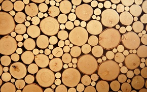 Picture wood, circles, cut logs