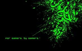 Picture Minimalism, Desktop Wallpaper, Razer Fragged, The logo