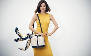 Wallpaper dress, photographer, Oroton, brunette, Boo George, hairstyle, yellow, actress, figure, background, bag, brand, Rose Byrne, ...