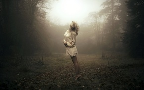 Picture forest, girl, fog