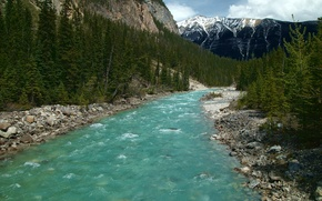 Picture forest, the sky, clouds, trees, mountains, river, Canada, Icefields Parkway