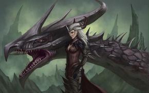 Picture rocks, dragon, head, art, witch, Dragon Age, Flemeth, Flemet