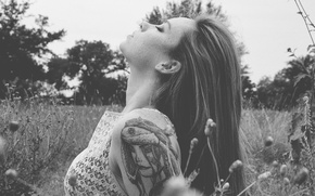 Picture girl, grass, field, woman, model, tattoo, redhead, black and white, tattoos, Hattie Watson, female, shoulder, …