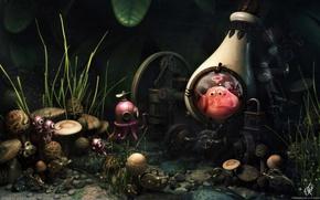 Wallpaper bottle, Hamid Ibrahim, mushrooms
