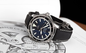 Picture watch, Seamaster, Professional, OMEGA