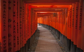 Wallpaper posts, The tunnel of Red gates to the Shrine Fushimi Nari, characters, tunnel, Japan, the ...