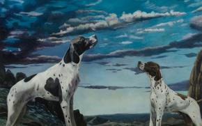Picture picture, Norwegian artist, Christer Karlstad, Wonder Dog