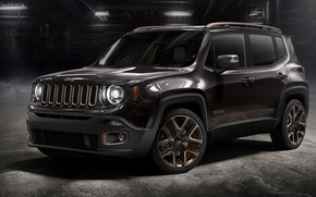 Picture Jeep, Xia, You, Renegade, Concept(2014)