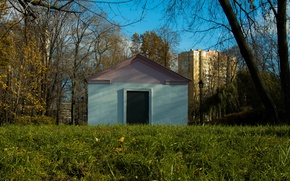 Picture The sky, Grass, House, Moscow, November