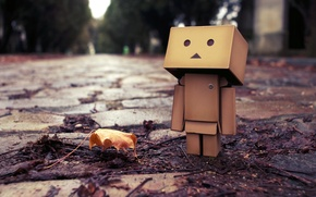 Picture autumn, sheet, puddle, Boxing, danbo, danbo