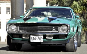 Picture Shelby, GT500, turquoise, muscle car, 1970, ford, Muscle car, mustang, Mustang, the front, Ford, гт500, ...