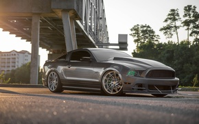 Picture Mustang, Ford, Bridge, GT, ACE Driven