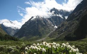 Picture landscape, mountains, nature, photo, New Zealand, National Park, Fiordland