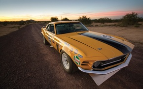 Picture Mustang, Ford, Boss 302, Race, 1970, Legend, Muscle car, TransAm