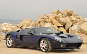 Picture Ford, beach, stones, '2004, gt