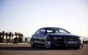 Picture Audi, Audi, black, frontside