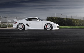 Picture car, white, porsche, cayman