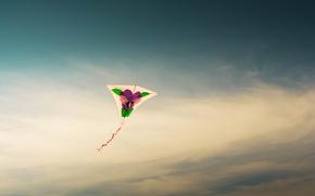 Picture sky, flight, kite
