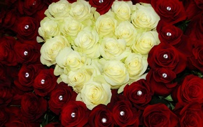 Picture flowers, heart, roses, bouquet, colorful, red, rose, white, heart, beautiful, bouquet