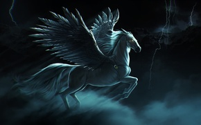 Picture the storm, the sky, lightning, horse, wings, Pegasus, pegasus